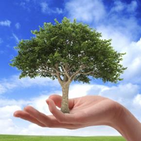 Producatorul de usi de garaj MCA investeste in certificate de carbon